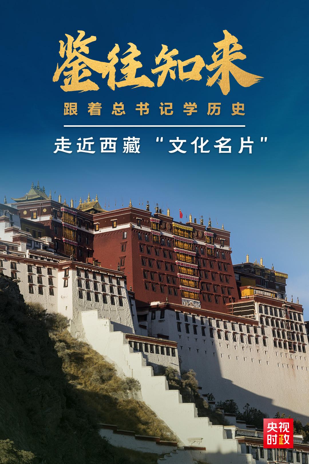 鉴往知来,跟着总书记学历史丨保护西藏优秀传统文化,总书记为何如此关注?